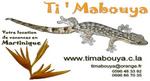 Profiter d'un cadre créole, au calme et confortable dans le sud de la Martinique.