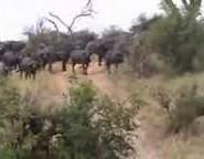 A faire en Tanzanie