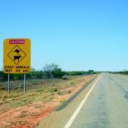 Comment partir en Australie en WHV?