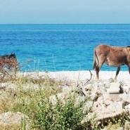 Vacances Albanie