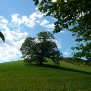 Location vacances Auvergne