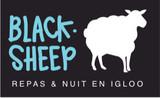 Blacksheep: Passez une nuit insolite dans un Igloo à Chamrousse!