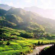 Climat Vietnam : quand partir pour échapper du temps maussade ?