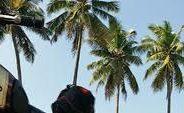A la découverte du Kerala