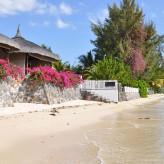 Zoom sur les attractions les plus populaires de l'île Maurice