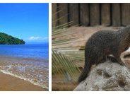 Le Masoala, découverte nature entre terre et mer