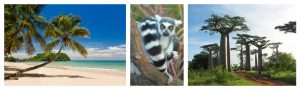 madagascar photo