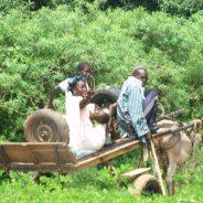 Des moments inoubliables sur le territoire sénégalais