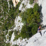 Entre2nature : Escalade et parcours aventure