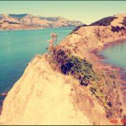 Les 10 incontournables de la Nouvelle Zélande