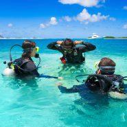 Les meilleurs sites de plongée aux Bahamas