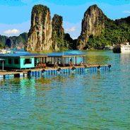 Comment préparer ses vacances au Vietnam ?