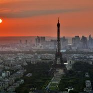 Partir à la découverte des vignobles de Paris