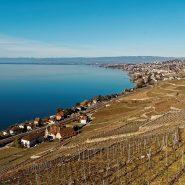 Séjour à Genève : les conseils pour passer des vacances inoubliables