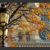 Visiter Paris: une ville splendide à découvrir toute l'année
