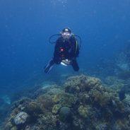 Les cinq questions que les gens me (se) posent le plus souvent concernant la plongée