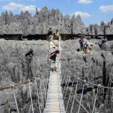 Tours opérateurs, les experts pour vos voyages touristiques à Madagascar