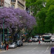 L'Argentine et ses multiples facettes