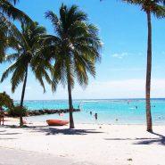 Comment bien organiser son séjour en Guadeloupe ?