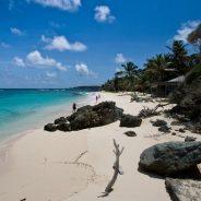 Louer un catamaran pour découvrir les Grenadines