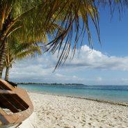 A la découverte de l'Ile Maurice : 4 spécialités culinaires traditionnelles
