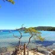 Les options pour explorer l'île de Porquerolles
