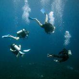 La plongée sous-marine dans la Riviera Maya au Mexique